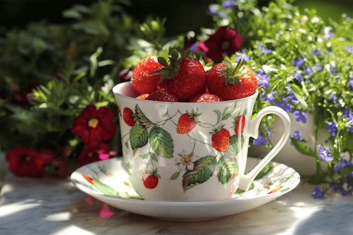Strawberries A Genuine Superfood