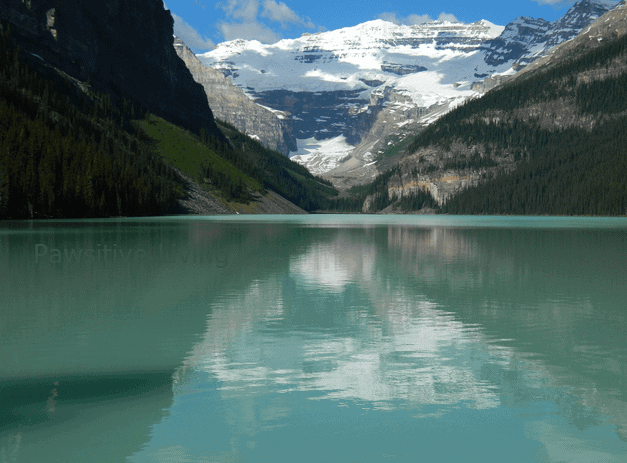 The Beauty of Banff National Park