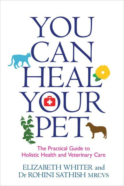 Heal Your Pet