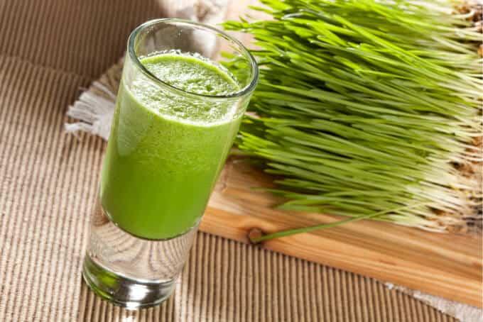 Wheatgrass – The Green Miracle Nectar