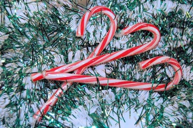 Where Did Christmas Candy Canes Originate?