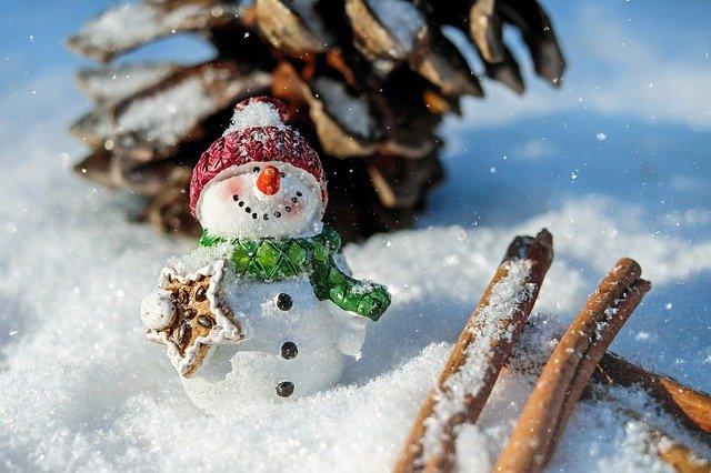 Seasons Eatings, Christmas Cookies Made Simple