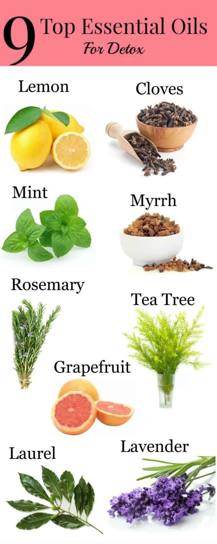 Top 9 Essential Oils to Maximize Detoxing