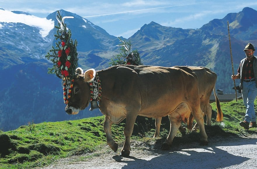 Top 6 Tourist Attractions in Austria, Popular & Off the Beaten Path