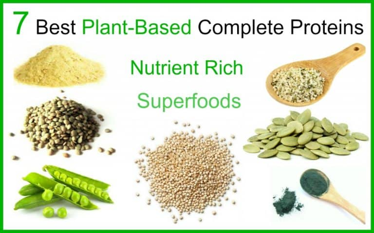 7 Best Plant-Based Proteins for Vibrant Health