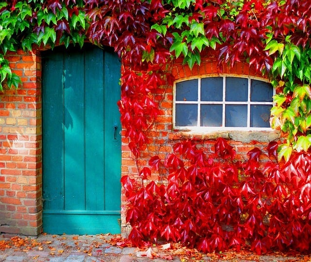 home with colorful autumn leaves