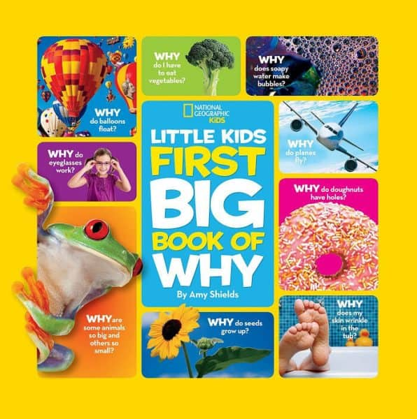National Geographic Little Kids Big Book of Why