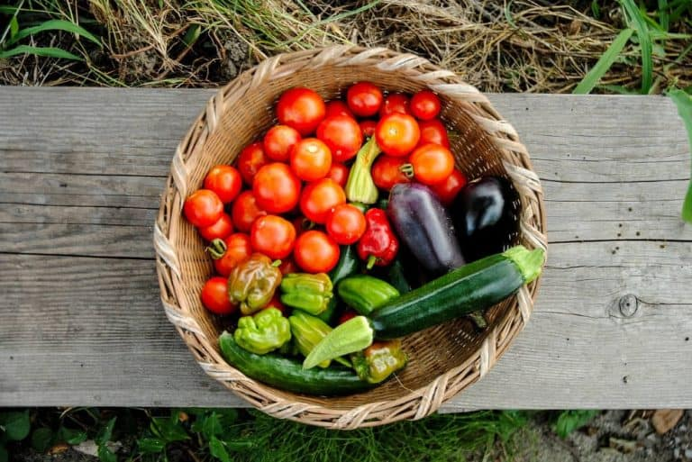 7 of the Healthiest Vegetables to Grow in Your Garden
