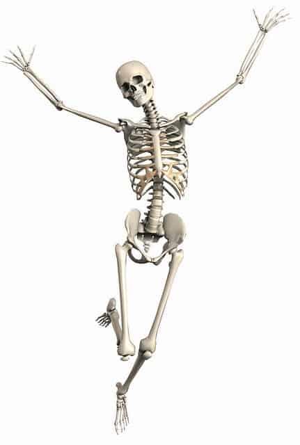Bones Density, How to Increase It!