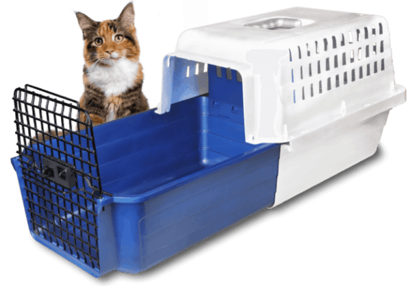 calm carrier for cats and dogs