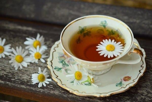 Cup of camomile tea - Pixabay