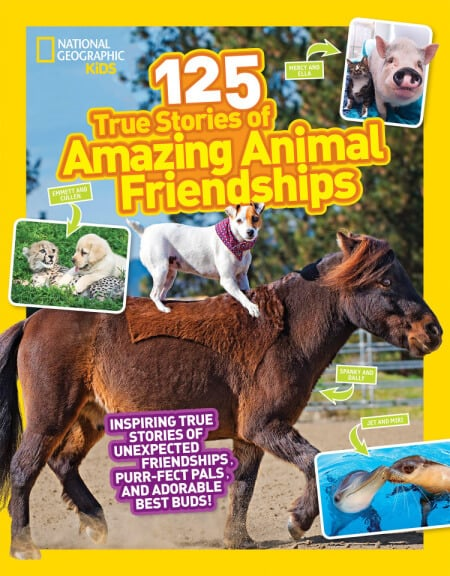125 Amazing Animal Stories