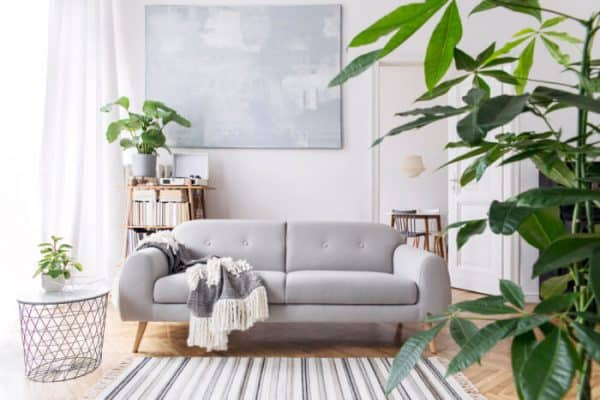 living room with comfy furniture and houseplants - depositphoto