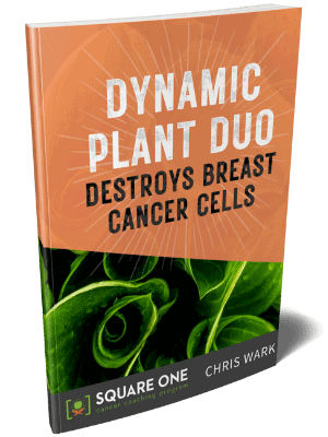 dynamic plant duo destroys breast cancer cells